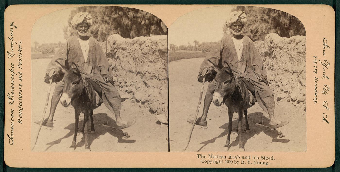 the silver donkey essay